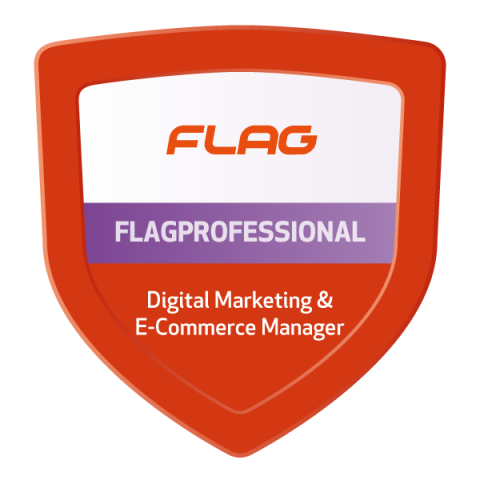 Badge FLAGProfessional Digital Marketing & E-Commerce Manager